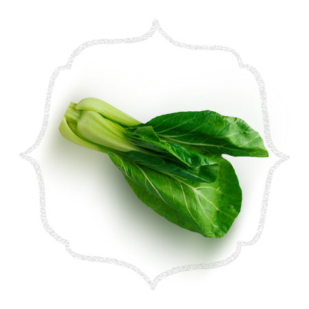 Website design for a food delivery service