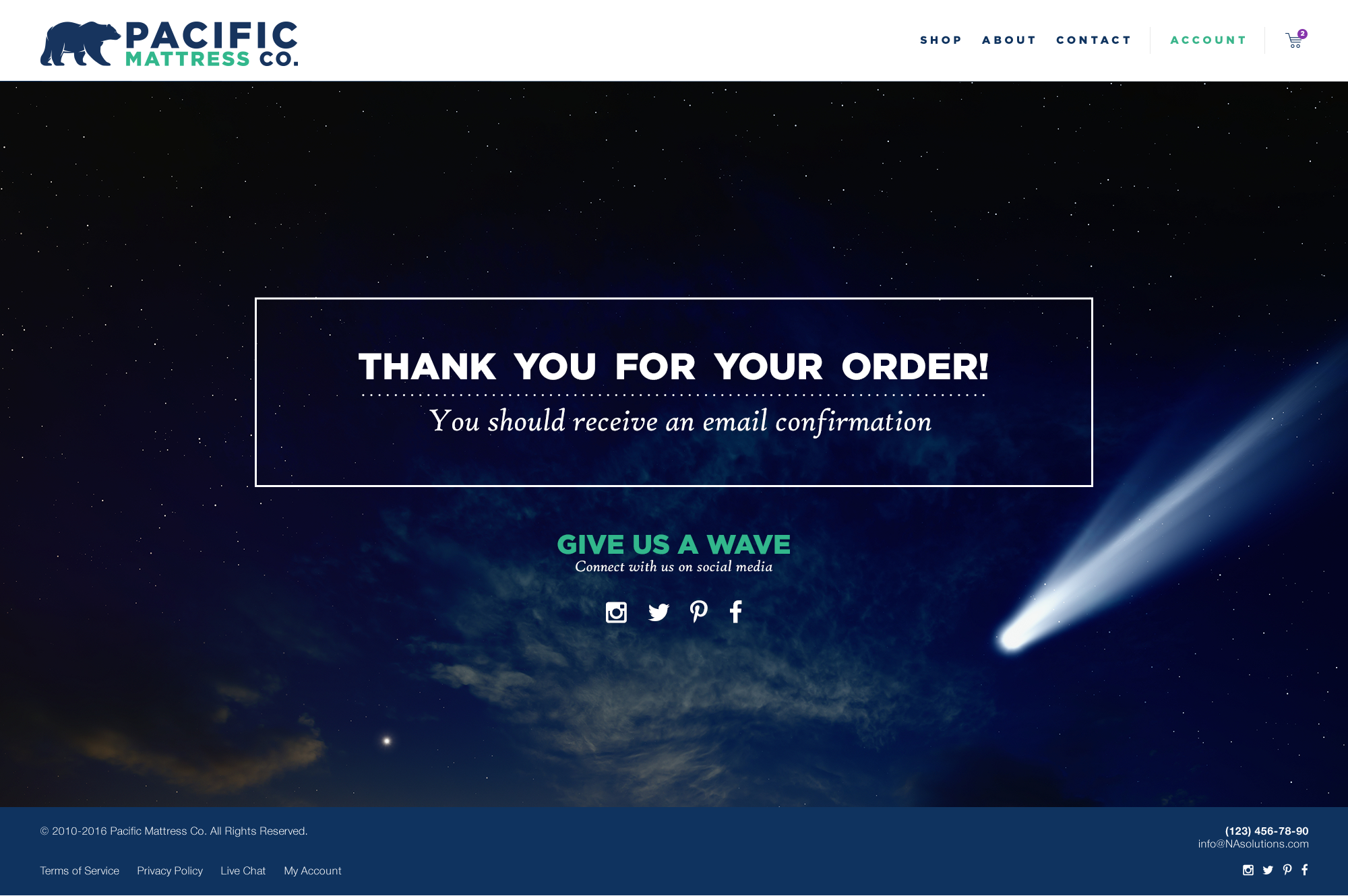 Thank you for your order! Success ecommerce website page